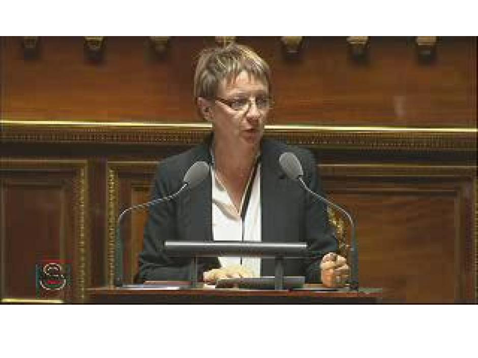 Mardi 21 mai 2013  Intervention de Brigitte Gonthier-Maurin  Groupe CRC