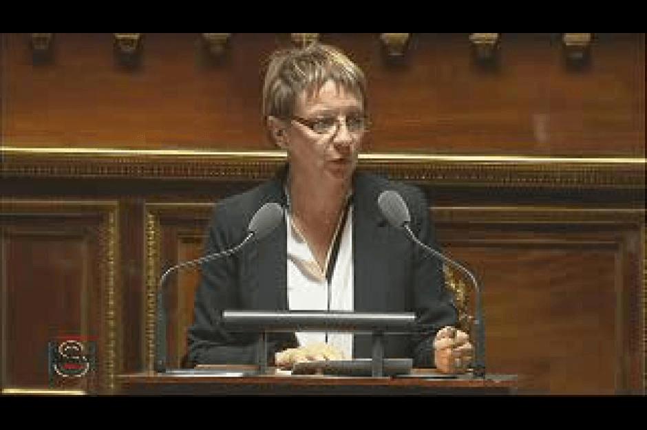 Question d'actualité au Sénat du 15 janvier, Brigitte Gonthier-Maurin